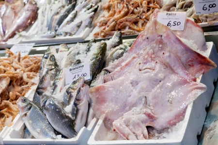 clavata: fresh cool fish on ice at street fish market in Bologna, Italy