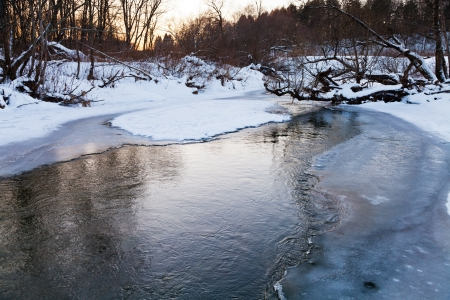 icebound banks of forest pond at winter sunset photo