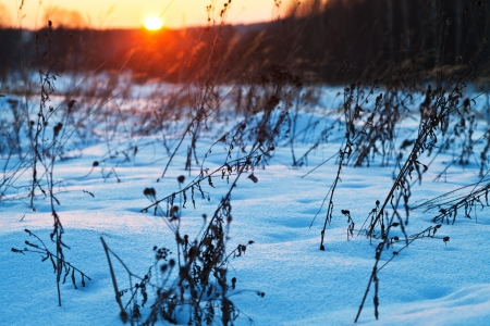 sundown under blue winter snowdrifts on country field photo