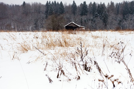 lonely rustic house in the snow woods in cold winter day Stock Photo - 17305628