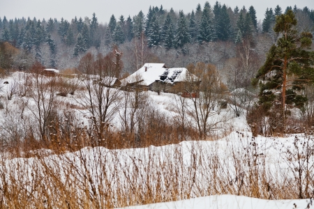 panorama of snow covered village on margin of a spruce forest on a winter day photo