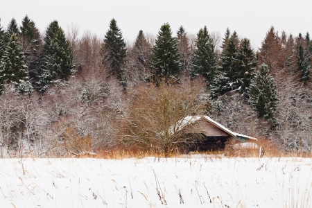 low wooden house on edge of snowed forest in cold winter day Stock Photo - 17305863