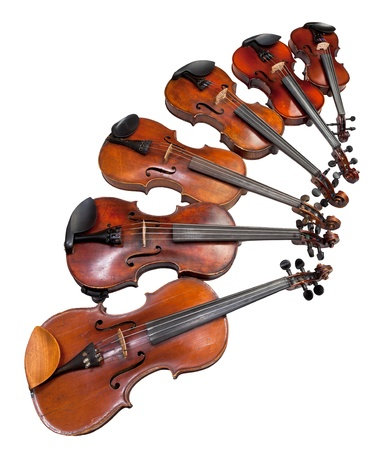 violins: six sizes of violins isolated on white background