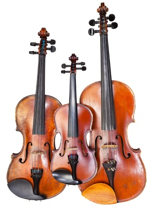 family of violins isolated on white background close up photo