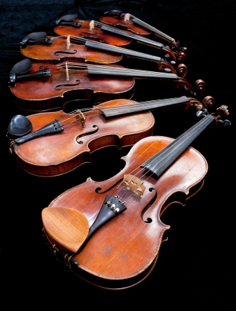 fiddles: different sized fiddles with black background close up