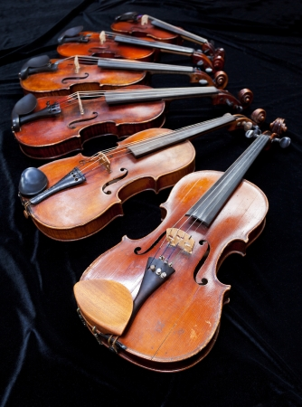 fiddles: family of different sized fiddles on black velvet close up