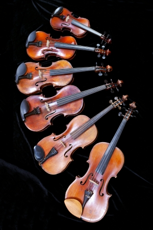fiddles: family of different sized fiddles on black velvet