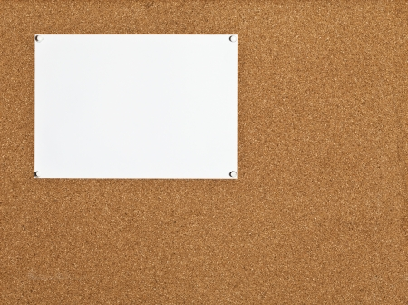 one sheet: one white sheet of paper on cork board