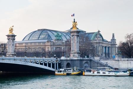 Pont Alexandre III e Grand Palais in background, a Parigi sera Archivio Fotografico - 18901978