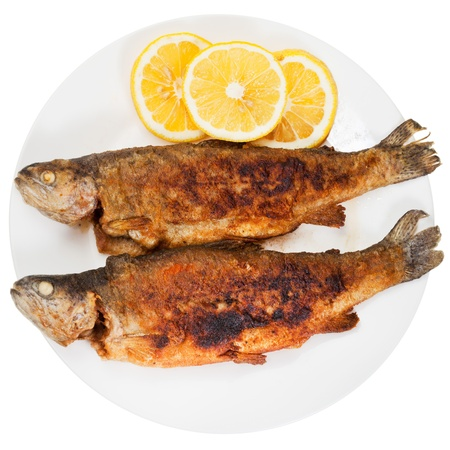 brook trout: top view of two fried river trout fish on plate isolated on white background