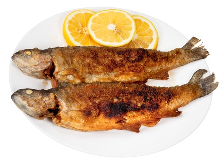 two fried river trout fishes on plate isolated on white background photo