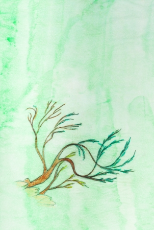 tracing: green bush on cliff drawn on green tracing paper
