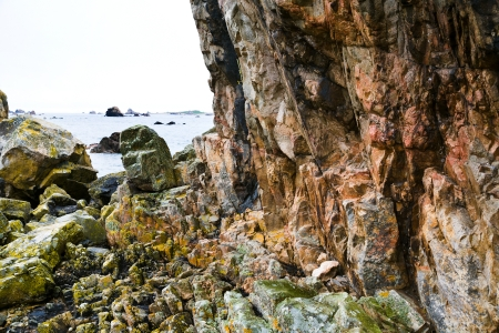 cotes d armor: pink granite cliff in Brittany, France