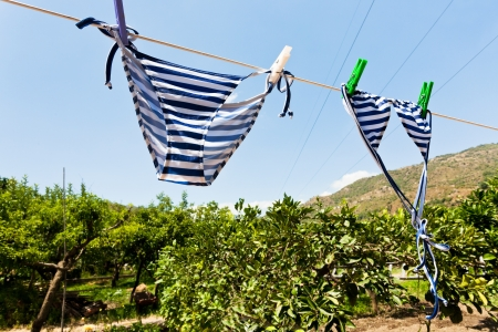drying female swimsuit outdoor in rural garden photo