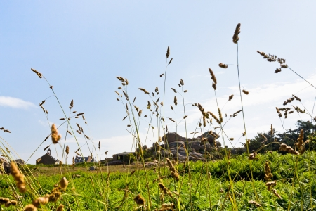 cotes d armor: rural landscape in Brittany in summer day