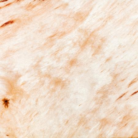 betula pendula: fondo da legno di betulla d'argento Archivio Fotografico