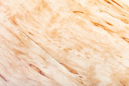 betula pendula: sfondo di legno naturale di betulla d'argento
