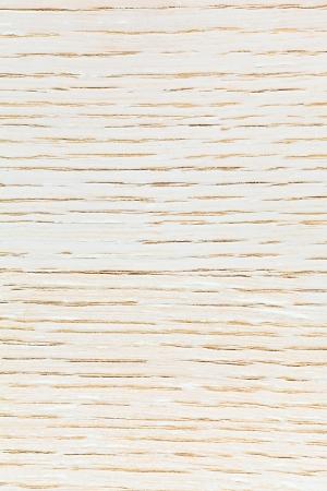 background from white toned ashwood photo