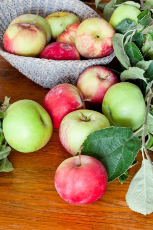 red and green apples with tree twig on wooden table close up photo