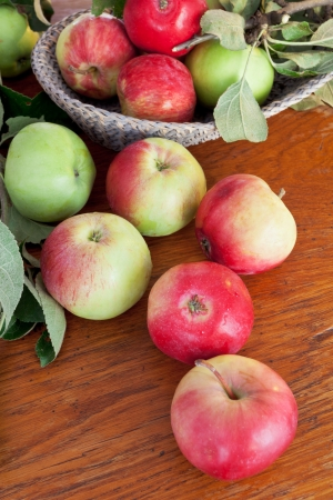 red and green apples with leaves on wooden table close up photo