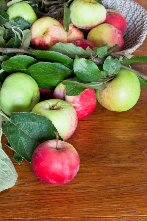 green leaves and red apples on wooden table photo