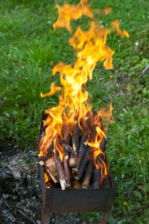 tongues of flame over burning wood in brazier photo