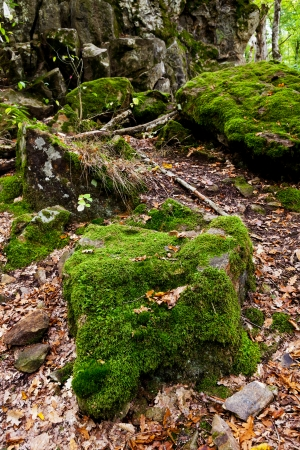 anomalous: moss-grown boulders of Rock Devil finger - landmark in shapsugskaya anomalous zone in caucasus mountains Stock Photo