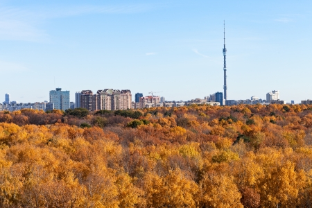 panorama with TV tower and autumn forest in sunny day in Moscow photo