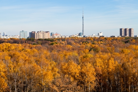 autumn skyline TV tower and yellow trees in Moscow in sunny day photo