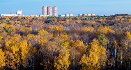 Moscow panoramic view urban houses, autumn trees and blue afternoon sky photo