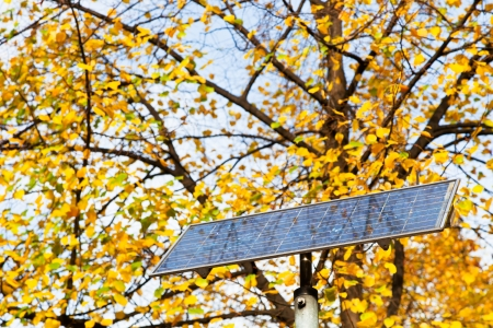 outdoor solar battery panel and tree in autumn day photo
