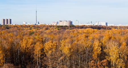 Moscow panorama with TV tower, houses and autumn trees photo