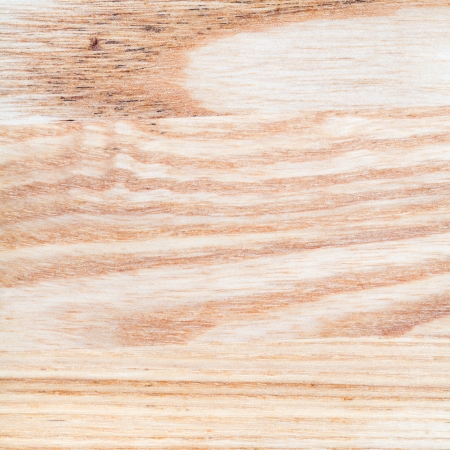 oiled: wood patterns of fresh sanded and oiled ashwood board close up Stock Photo