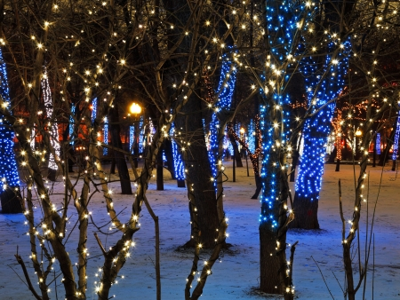 christmas night illumination of Moscow Clear Ponds (Chistoprudniy) boulevard photo