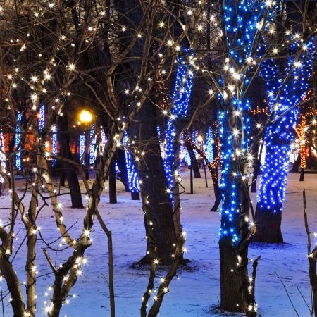 navidad noche la iluminaci�n de Mosc� Claro Ponds (Chistoprudniy) boulevard photo