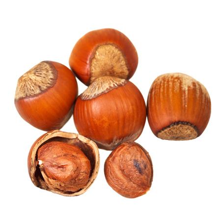 avellan: several of hazelnuts close up isolated on white background