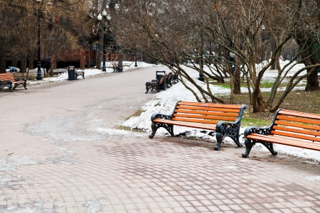 empty wooden benches in city park on cold winter day photo