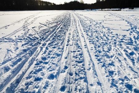 ski runs: snowy field with ski runs in cold winter sunny day