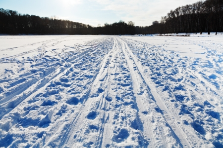 snowy field in cold winter sunny day photo