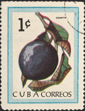 CUBA - CIRCA 1963: A postage stamp printed in the Cuba shows tropical fruit - Caimito, circa 1963