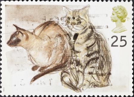 puskas: UNITED KINGDOM - CIRCA 1995: A postage stamp printed in the United Kingdom shows Puskas (Siamese) and Tigger (tabby) art by Elizabeth Blackadder, circa 1995