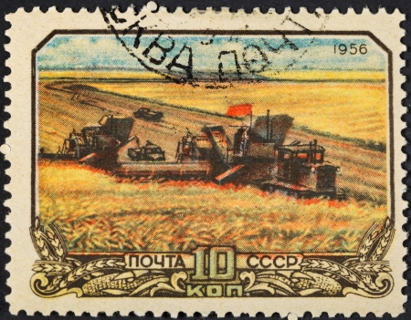 USSR - CIRCA 1956: A postage stamp printed in the USSR shows harvesting wheat in collective farm peasantry in Soviet Russia, circa 1956