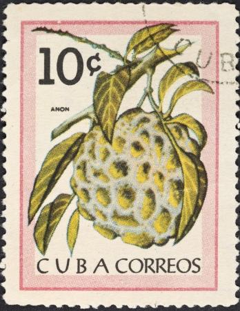 anon: CUBA - CIRCA 1963: A postage stamp printed in the Cuba shows tropical fruit - anon (Sugar-apple), circa 1963 Editorial