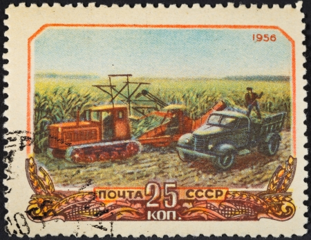 USSR - CIRCA 1956: A postage stamp printed in the USSR shows harvesting corn in collective farm peasantry in Soviet Russia, circa 1956