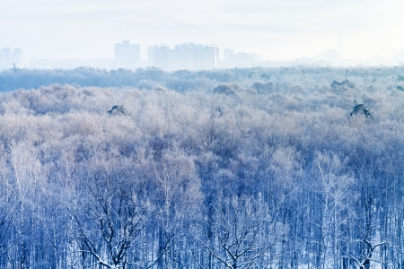 early morning over frozen urban park in winter, Moscow photo