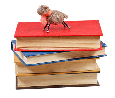 felt soft toy lamb on stack of books isolated on white  photo