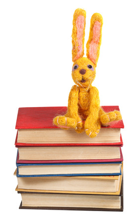 felt soft toy rabbit sits on stack of books isolated on white  photo
