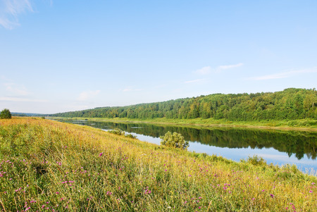 green grass on riverbank in summer day, Russia Stock Photo