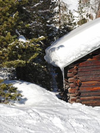 snow-covered wooden house and fir tree in Val Gardena, Dolomites, Italy photo