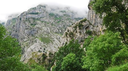 high mountains in national park Picos de Europa, Asturias, Spain photo